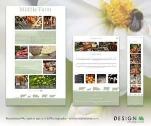 Design M | Website Design | Photography